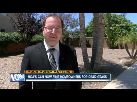 Homeowners who let grass go brown to save water during California drought could face fines