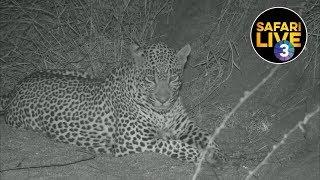 safariLIVE on SABC 3 - Episode 2