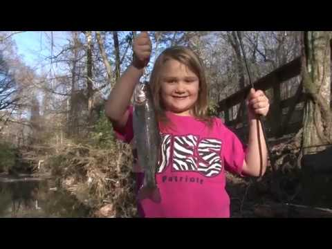 Arkansas Wildlife - S3.E9, Trout in the City and Arkansas Duck Hunting History