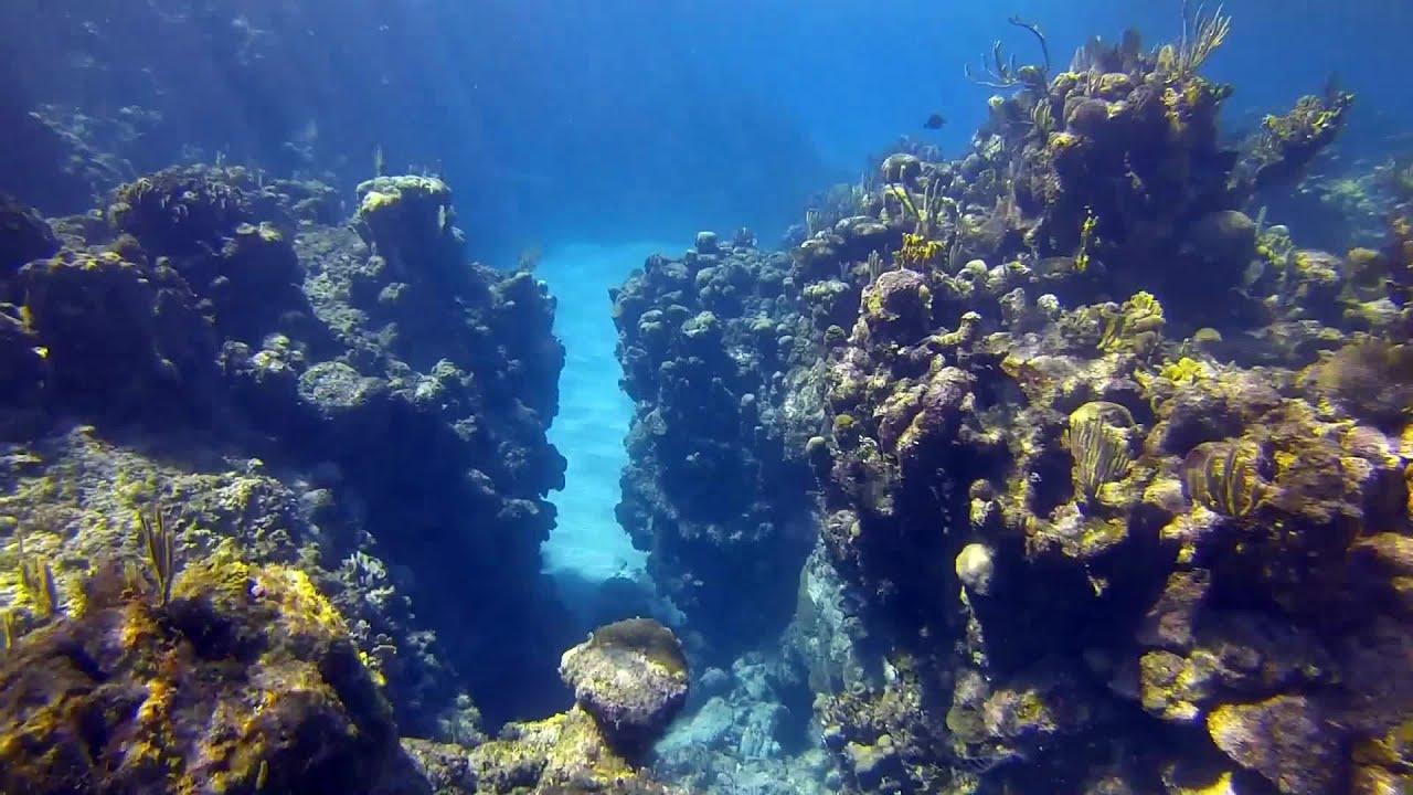 Snorkeling Plong 233 E En Apn 233 E In West Bay Roatan Gopro3