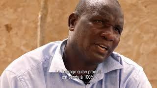 Réussir dans l'élevage, parcours d'éleveurs mauritaniens entre tradition et modernité