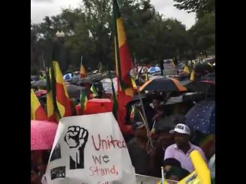 Ethiopian Demonstration in Washington DC