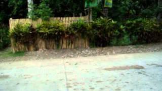 Longboard Push @ Sta.Irene Bayugan Agusan del Sur