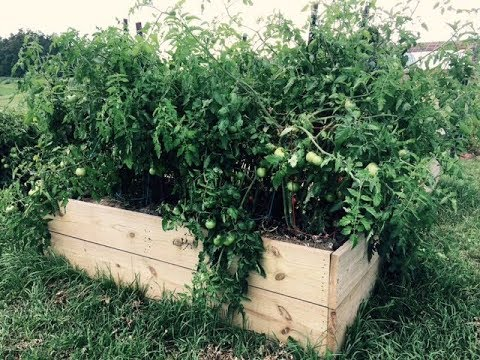 How To Make 4x8 Garden Boxes   Cheapest And Fastest Way! (what To Use/how  To Make Secure)