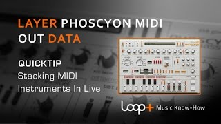 D16 Phoscyon Tutorial - Midi Routing