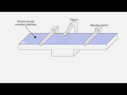 Langmuir Blodgett animation
