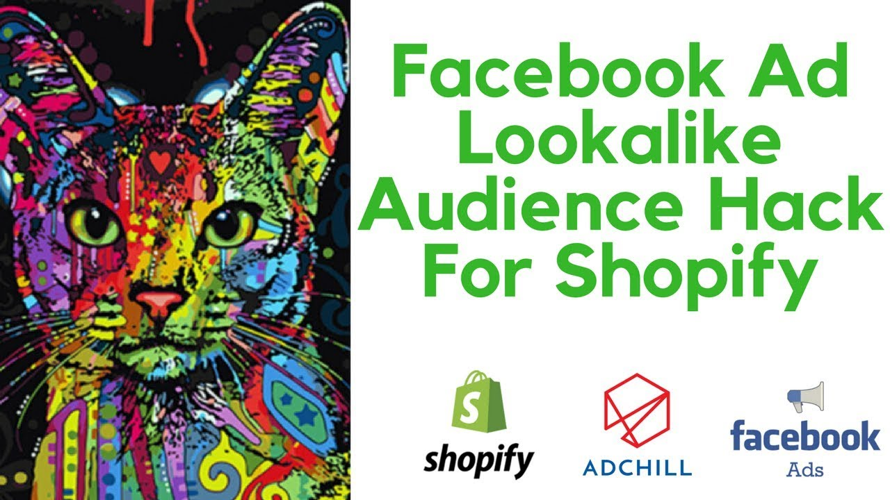 Facebook Ad Audience Targeting for Shopify