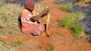 Fire Hunting in Australia