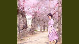 HANAsakura