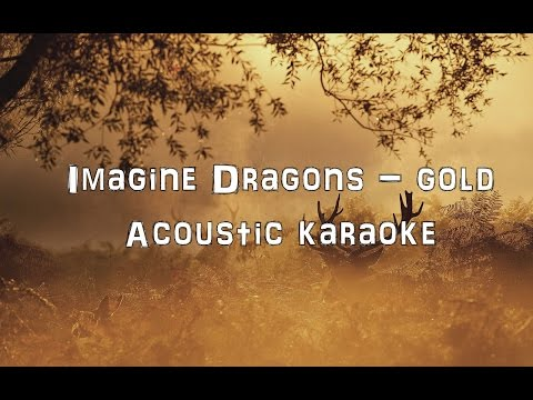 Imagine Dragons - Gold [Acoustic Cover.Lyrics.Karaoke]