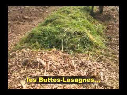 Conseils en Jardinage Biologique