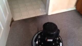 SPOTLESS FLOOR CARE Green Carpet Cleaning