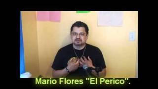 Baixar Mario Flores El Perico Musicas Gratis Baixar Mp3 Gratis