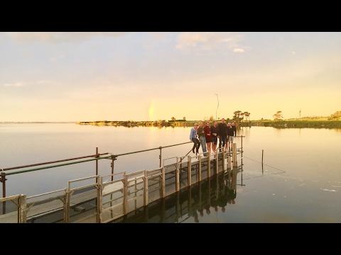 Haast Whitebaiting video - West coast New Zealand