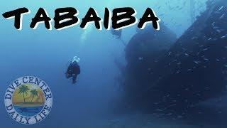 Diving Tenerife Tabaiba - Best dive sites