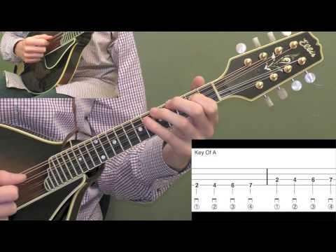 Free Mandolin Lesson: 1st Finger Closed Position Major Scale