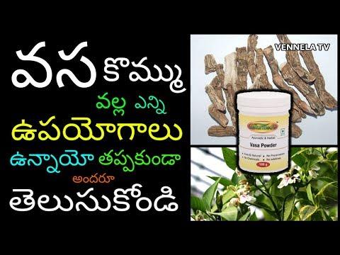 Uses and Benefits of VASA KOMMU | వస కొమ్ము వల్ల ఎన్ని ఉపయోగాలో తెలుసా ? | Vennela Tv