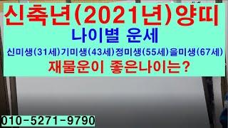 신축년(2021년)양띠의 나이별 운세 신미생(31세)기미생(43세)정미생(55세)을미생(67세)재물운이 좋은…