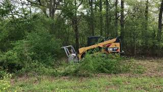 Surgical Land Clearing-fence row cleanup
