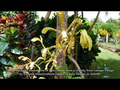 5W0GC Apia Samoa. From dxnews.com