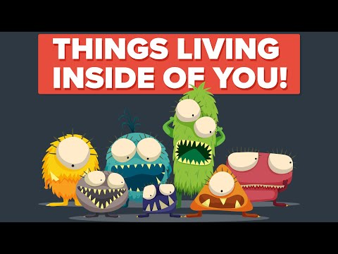 Horrifying Things That Can Be Living Inside Us