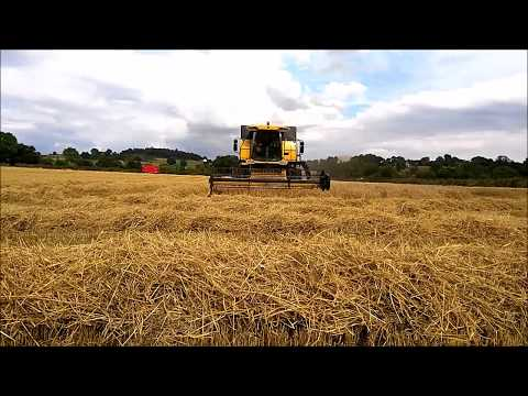 Irish Grain Harvet Borris Co Carlow, 2016 -New Holland CS640 Combine