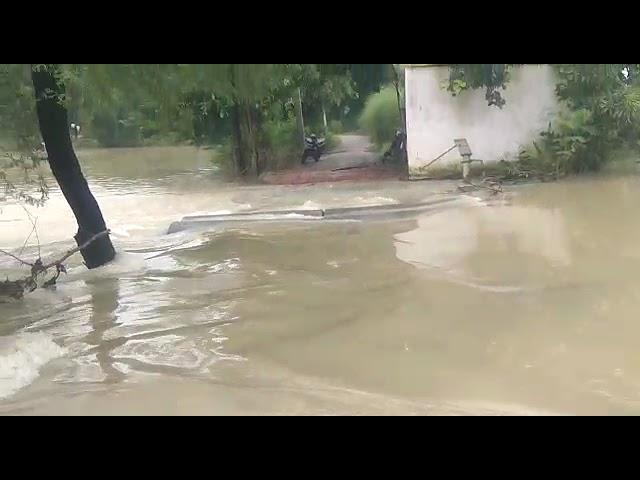 बलरामपुर जिले के कई गांव में बाढ़ का तांडव जारी आप सभी को बताते चलें कि उतरौला तहसील के फत्तेपुर जाने