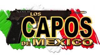 Los Capos De Mexico - Me Enamore De Ti