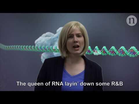 Epic Rap Battles of Chemistry: Jennifer Doudna vs. Paul Alivisatos