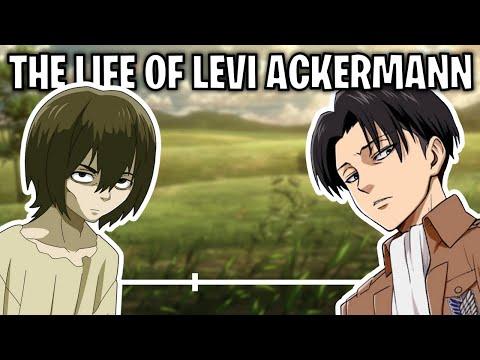 The Life Of Levi Ackermann (Attack On Titan)