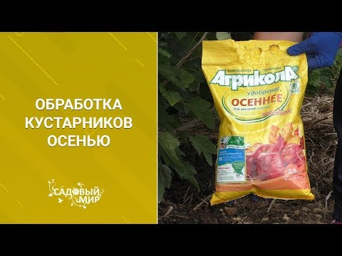 Вопрос: Обработка кустов ягодных от тли весной, без яда, какая?