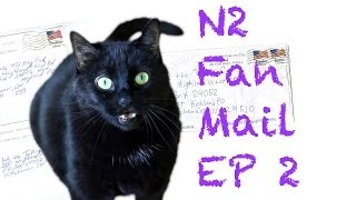 n2 the talking cat fan mail ep2