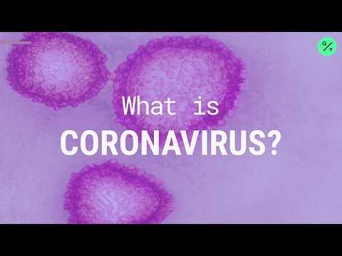 What Is The Coronavirus?