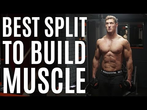 The BEST Training Split to BUILD MUSCLE | My New Training Programme