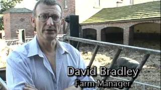 Reaching Back to the Past - The Work of the Rare Breeds Survival Trust Clip 2