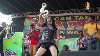 TARI ULAR BESAR - ORGAN TARLING JAKA PESONA DANCE SNAKE