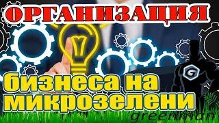 КУРС Организация бизнеса на микрозелени Урок 1