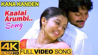 Gambar cover Tamil Hits | Kaalai Arumbi Video Song 4K | Kana Kanden Movie Songs | Srikanth | Gopika | Vidyasagar