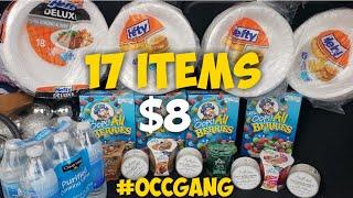 Dollar General Haul 17 items $8 Vlogmas Day 10