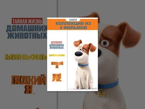 «Гадкий я», «Гадкий я 2», «Миньоны» и «Тайная жизнь домашних животных»