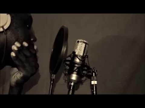Akon - Never Took The Time - Ringmusics Cover