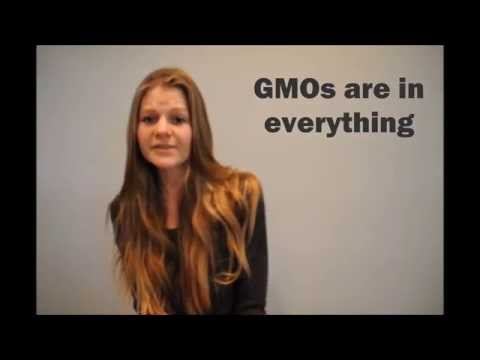 The GMO Basics | Genetically Modified Organisms and Foods