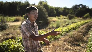 San Francisco: Namu Gaji Natural Farm | Final Straw Documentary Short Takes
