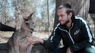 Zedd – Australia & New Zealand Recap 2018