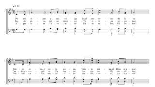 De Mil arpas y Mil Voces #14