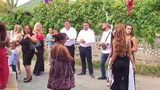 Elvir I Fazlija Bend ( Cigani Mi Braća  Svadba Alimanović ) Živinice 2017(UŽIVO)