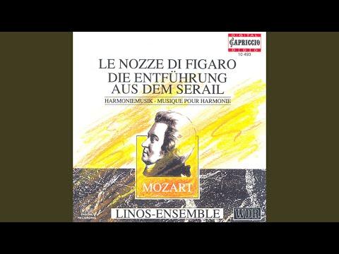 Linos Ensemble - Le nozze di Figaro baixar grátis um toque para celular