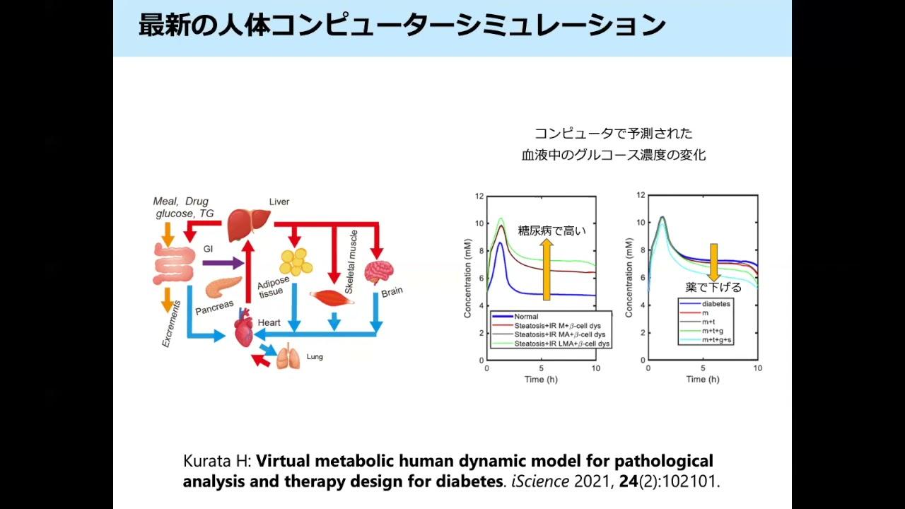 人体コンピュータシミュレーションについての解説動画/A new movie for the human-computer simulation