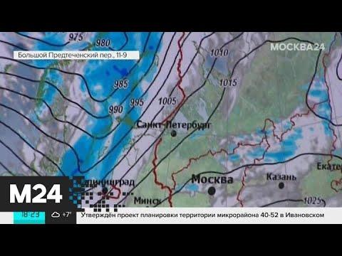 Снег в Москве растает к началу марта - Москва 24