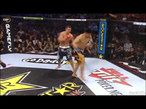 Best Roundhouse Kick UFC MMA Knockouts Ever Compilation 2015, HD